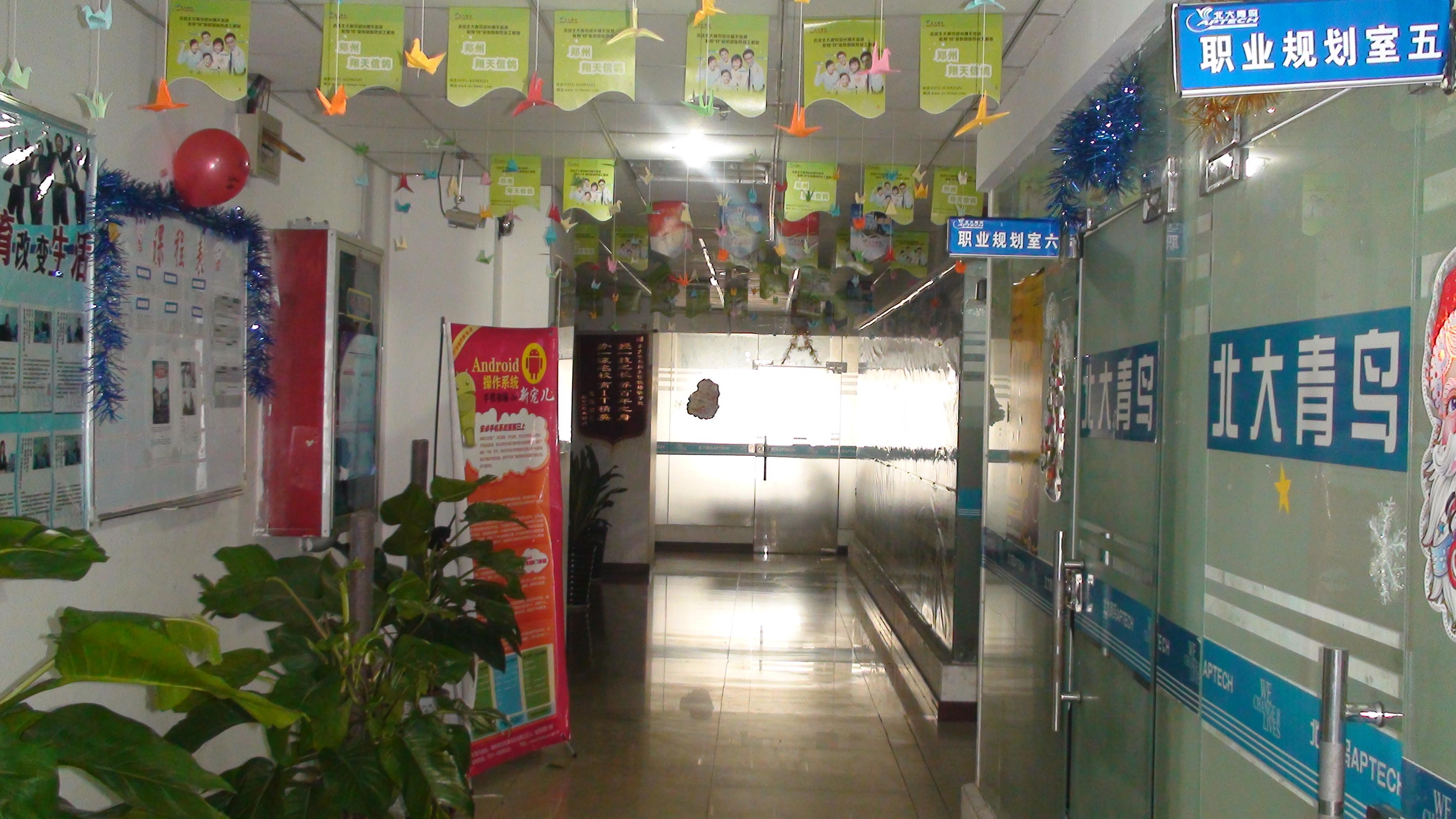 郑州北大青鸟公司化环境
